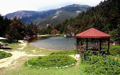 Trabzon Kamp Alanları